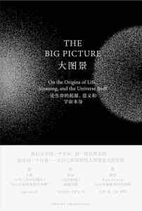 大图景 : 论生命的起源、意义和宇宙本身插图1