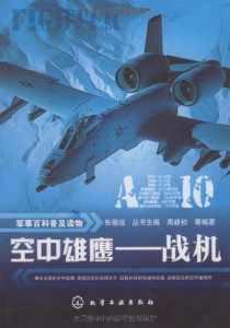 空中雄鹰:战机插图1