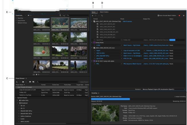 Adobe Media Encoder 2020插图13