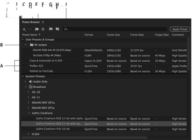 Adobe Media Encoder 2020插图15