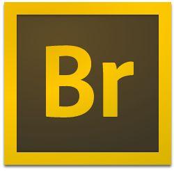 Adobe Bridge CC2020 Mac【Br CC2020 Mac版】官方中文破解版插图1